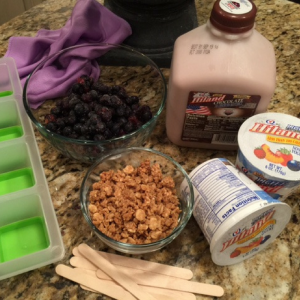 blueberry-granola-cereal-pop-ingredients