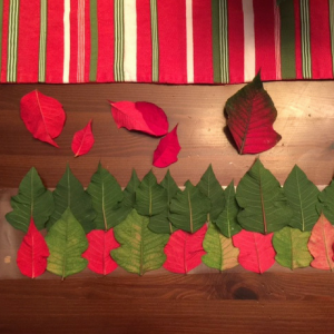 diy-poinsettia-plant-holder-step-3