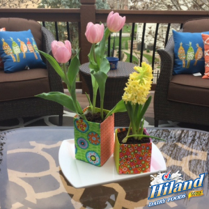 DIY Spring Flower Pot Craft