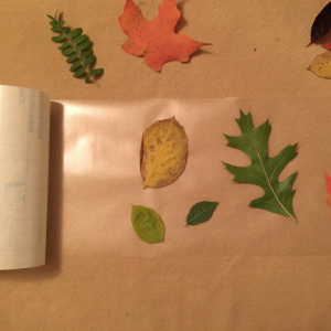 fall-leaf-luminaries-step-2