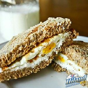 Herbed Cream Cheese and Egg Sandwich Recipe