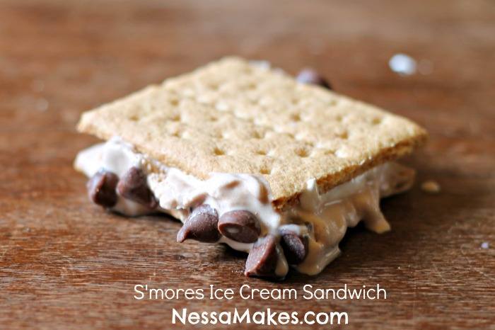 Smores-Ice-Cream-Sandwich-1