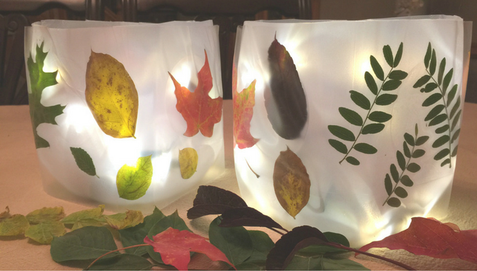 this-seasons-easiest-luminaries